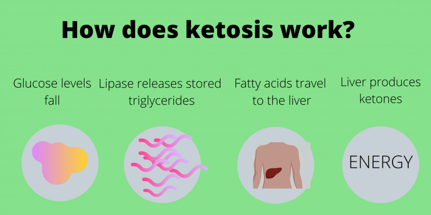 how ketosis work